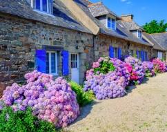 Immobilien Kaufen In Der Bretagne Hauser Wohnungen Villen